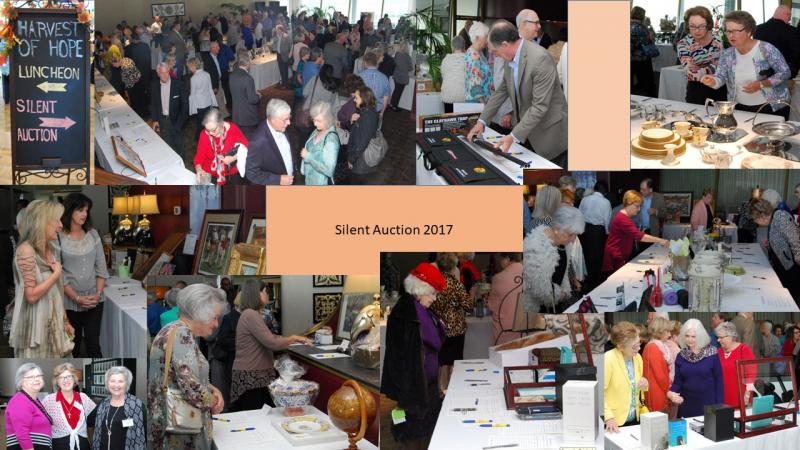 Harvest of Hope 2017 Silent Auction